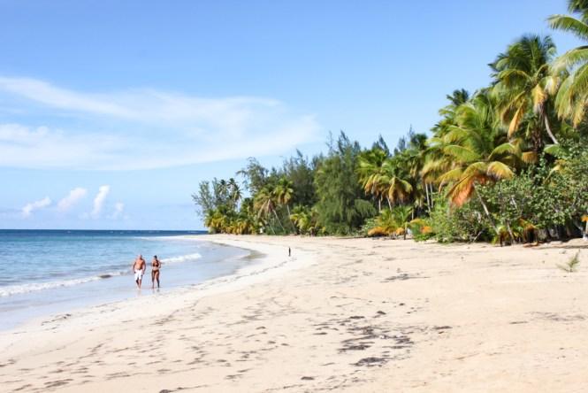 Playa las Ballenas- visiter Las Terrenas en républicaine dominicaine