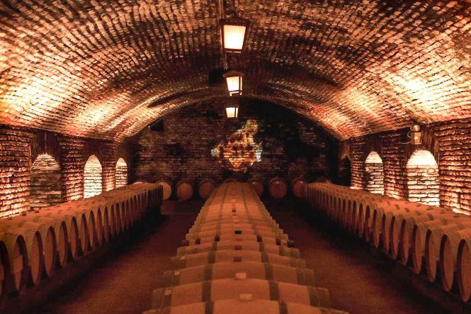 visiter Santiago du Chili Cave de concha y toro