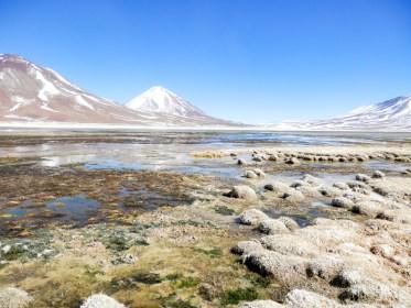 Laguna verde visiter le Salar d'Uyuni en bolivie