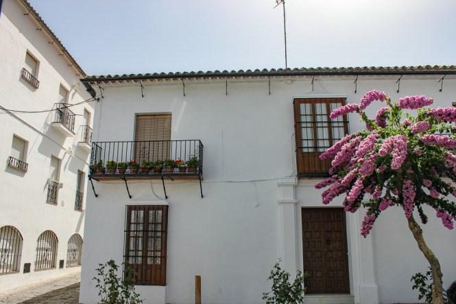 Maison de Grazalema