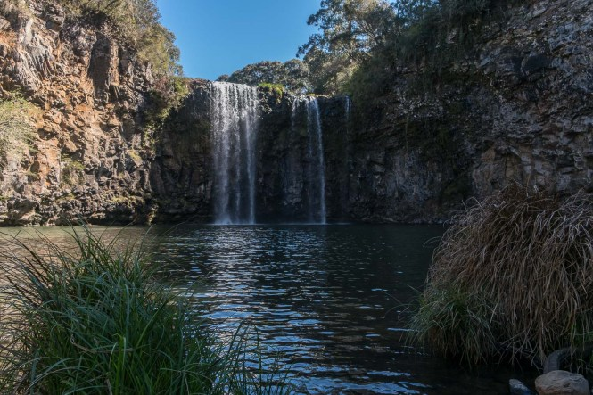 Dangar Falls Dorrigo National Park