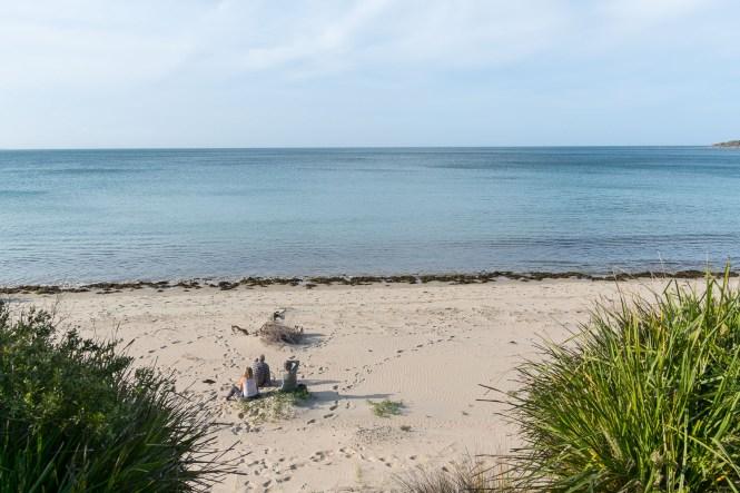 Currarong Beach shoalhaven jervis bay 100 beach challenge