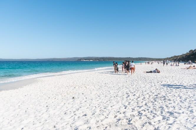 Hyams (Seamans) Beachshoalhaven jervis beach 100 beach challenge