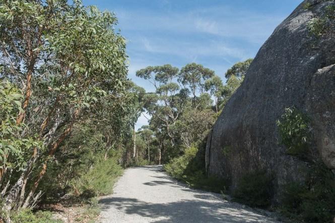 Mount Oberon Summit Track Wilsons Promontory sentier