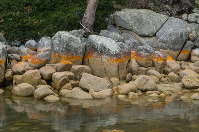 Binalong Bay bay of Fires en tasmanie itinéraire de 2 semaines