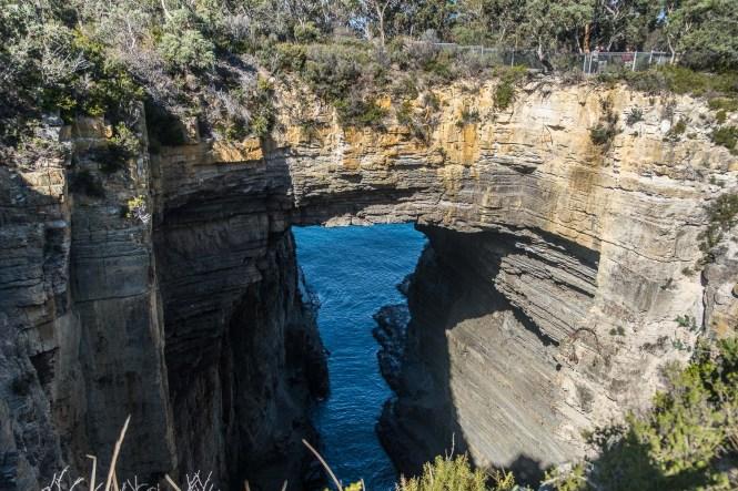 tasmans arch lookout ROAD TRIP en tasmanie itineraire 2 semaines
