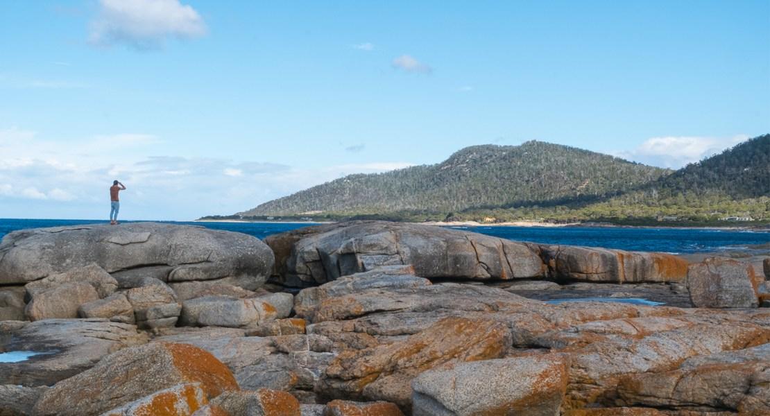 Road trip en Tasmanie : itinéraire de 2 semaines