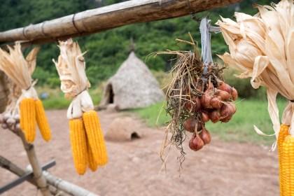 décors king trang An baie d'halong terrestre tam coc