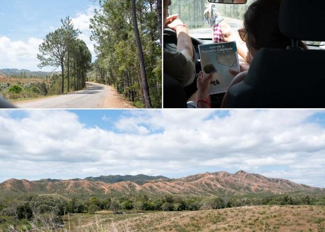 Route-nouvelle-caledonie-relais-de-poingam