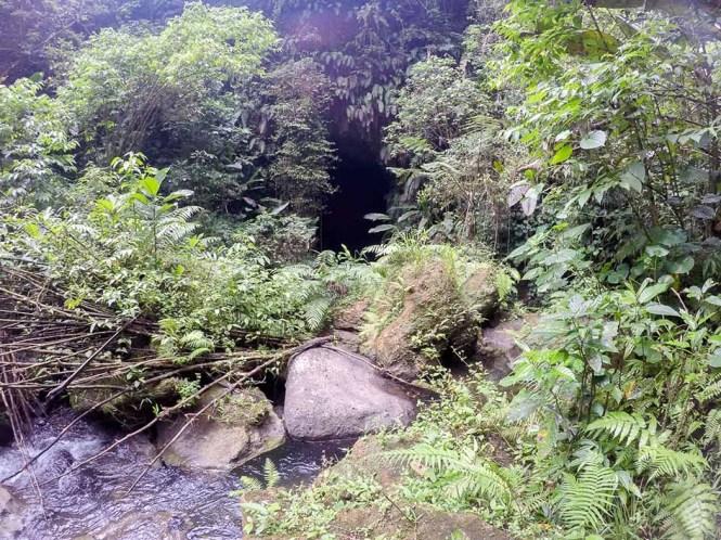 Millenium-Cave-entree-de-la-grotte