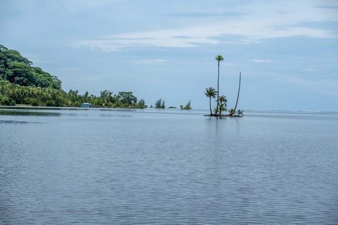 ilot-cocotiers-raiatea