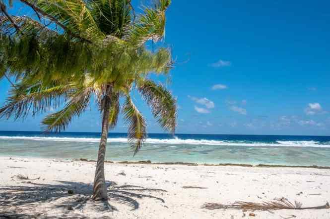 rangiroa-plage-coté-océan