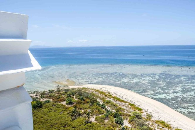 phare-amede-nouvelle-caledonie-nidification