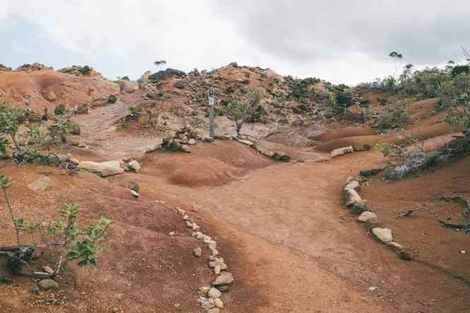 îlot-casy-plateau