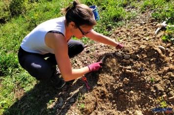 Myriam legt die Baumscheiben an