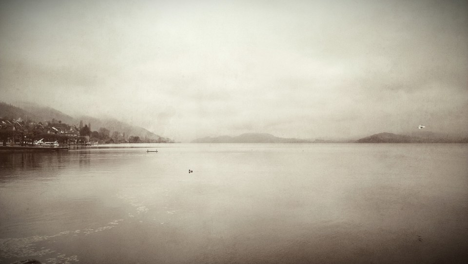 Lonely-Lake-Lonely-Bird-Landscape-Photography