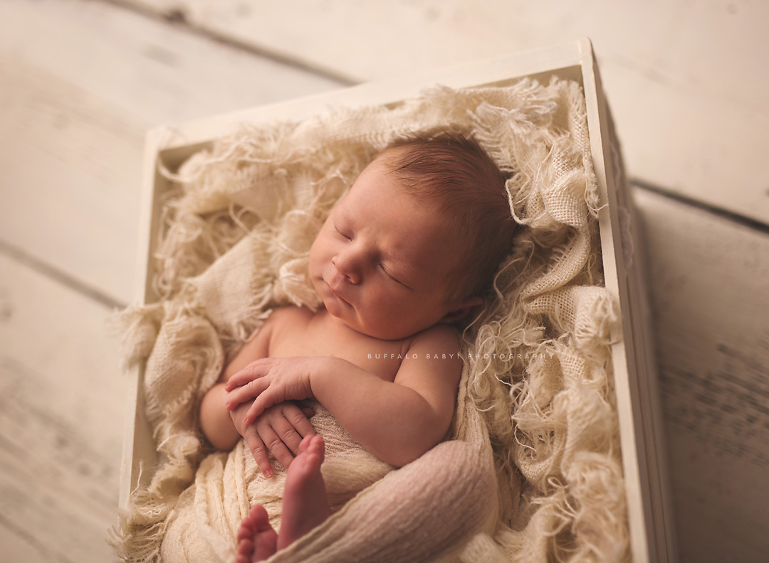Newborn Photography Buffalo NY