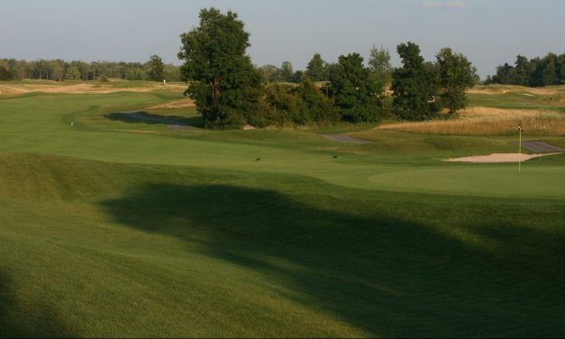 #BuffalosBestGolf 2020 public course ranking 1 to 5