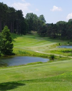 The 6th at Pine Valley