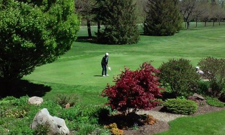 Playoff decides medalist at 2017 Section VI Boys Golf