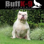 buff_k9_athlete_dog_supplement_bully_muscle_kuwait_capo_gotti