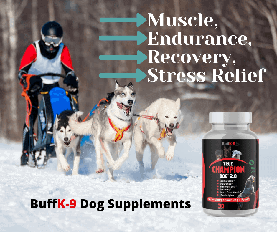 buff k9 weight pull dogs power strength agility recovery supplements