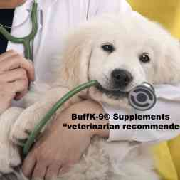 buff k9 positive reinforcement for dogs