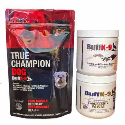 dog supplements performance