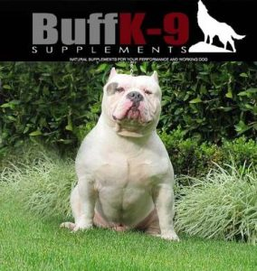 buffk9-bully-muscle-builder-supplement-pitbull-kingline