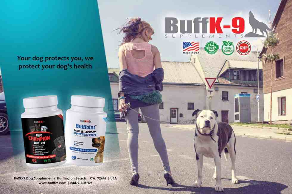buffk9 dog vitamin supplements buffjoint buffhemp true champion dog health