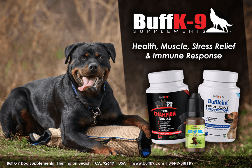 buffk9 dog supplements hemp cbd oil joint health stress endurance