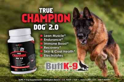 buffk9 german shepherd dog vitamin supplements health endurance adopt a protection dog