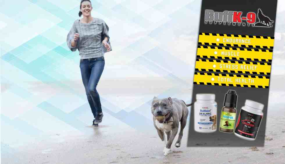dog bed dog supplements for pitbulls buff k9