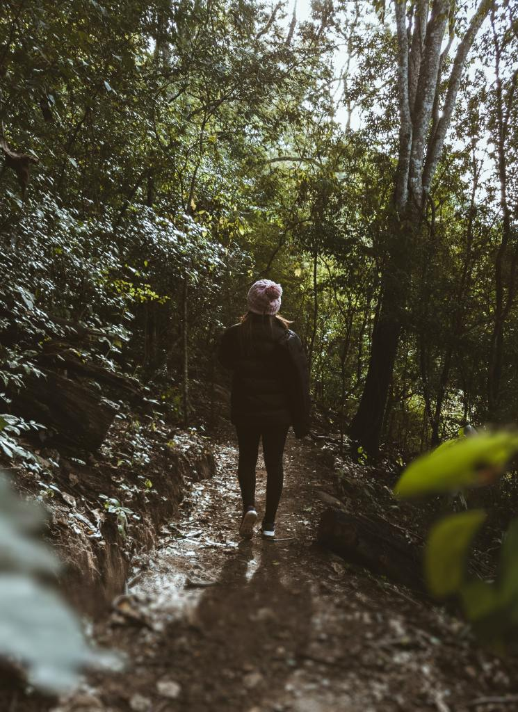 man hiking in the forests or hills
