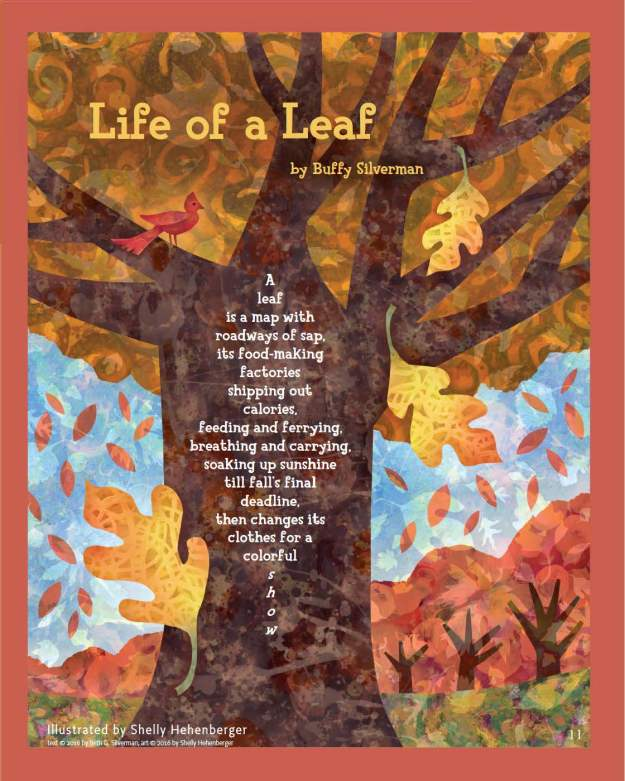 life_of_a_leaf_cricket