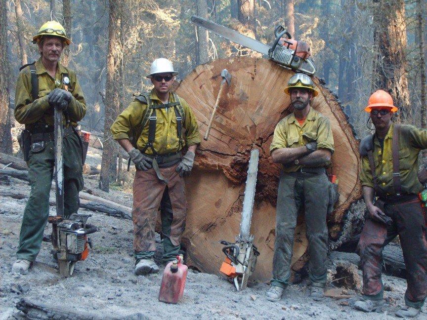 Самые опасные профессии в мире: сапёры, шахтеры, полицейские, лесорубы и другие