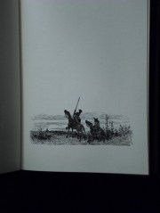 Don Quixote 10