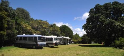 With the Waikato Buses