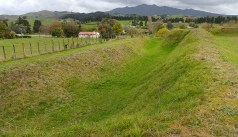 Mt Pirongia behind