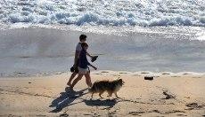 People enjoying a wa;lk on Hahei Beach