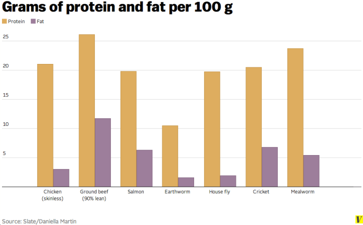 Grams of cricket protein