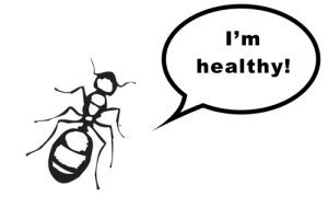 healthy bugs
