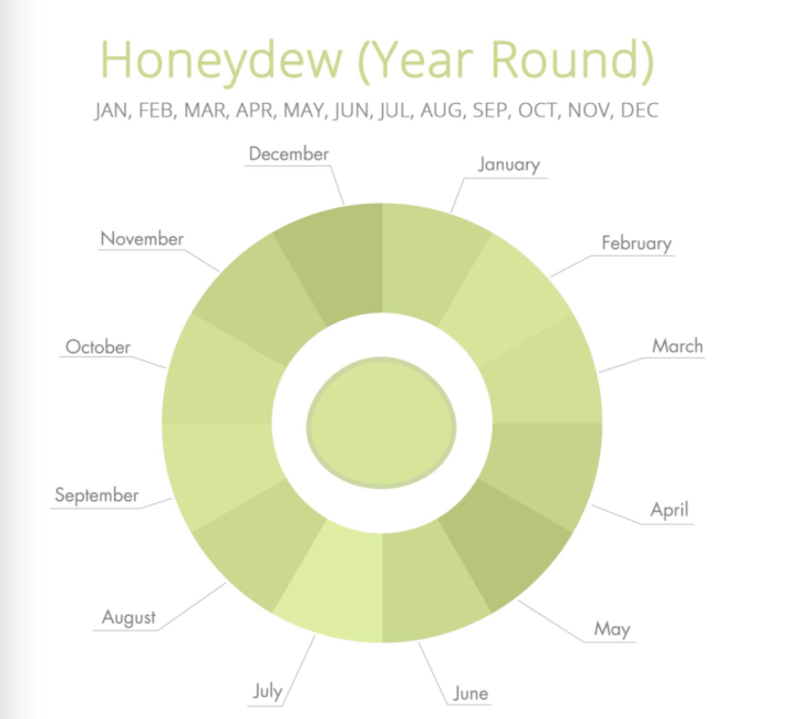 honeydew_season.png