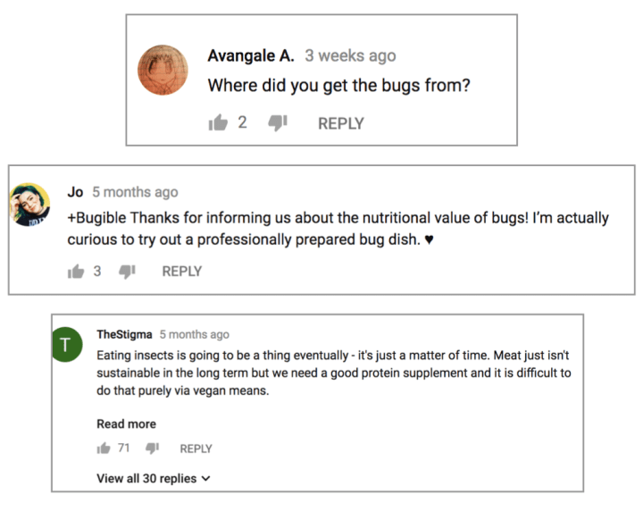 eat-bugs-comments-2.png