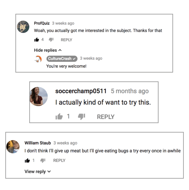 eat-bugs-comments.png