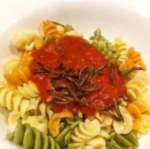 mealworm pasta