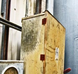 Raccoon (Procyon lotor), Denton, Texas--grease marks on electrical box