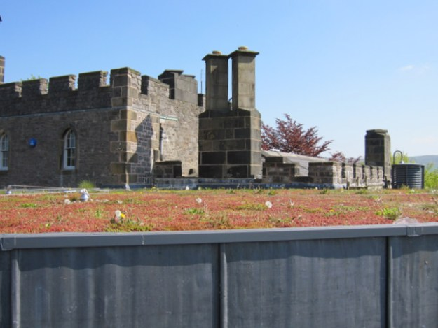 The Sedum roof on the Atrium cafe in Clitheroe - note the dandelions making themselves at home!© Copyright John S Turner and licensed for reuse under this Creative Commons Licence.