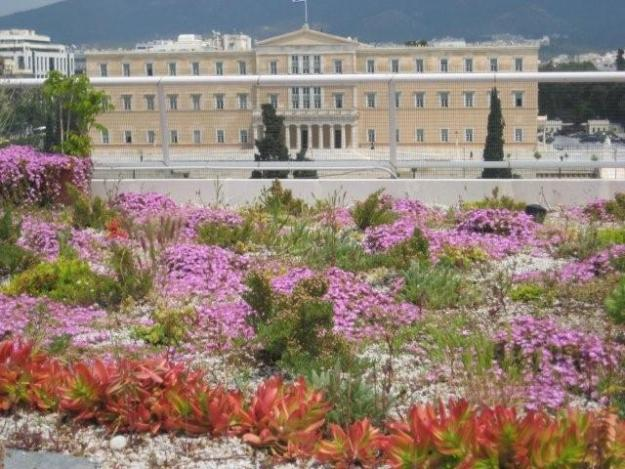 """My absolute favourite - the Treasury Building in Athens, Greece. A magnet for pollinators and birds. """"The Treasury - Syntagma"""" by Andrew Michael Clements - Oikosteges Archive. Licensed under CC BY 3.0 via Wikimedia Commons"""