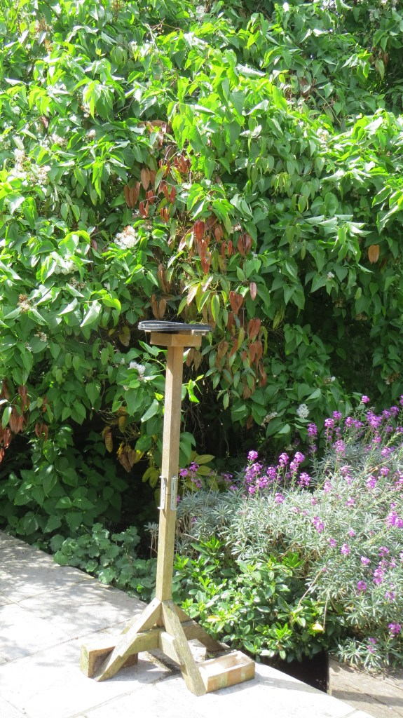 My Heath Robinson bird table.